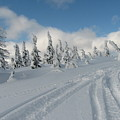 Snow Pass Bc High Country by Janice Robertson