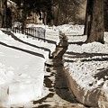 Snow Paths And Winter Shadows by Frank J Casella