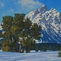 Snow Plume-cathedral Group by Lanny Grant
