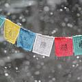 Snow Prayers by Rasma Bertz