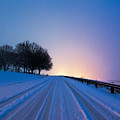 Snow Rizer by Robert Loe