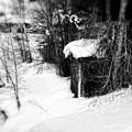 Snow Scene by Elizabeth Mix