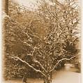 Snow Scene by Robert McCulloch