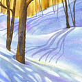 Snow-shadows by Nancy Newman