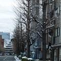 Snow Shibuya Tokyo Japan by Lee Tinglu
