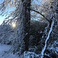 Snow Sunrise 2 by Kevin Wheeler