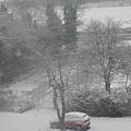 Snow by Utpal Datta