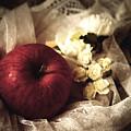 Snow White's Chamber by Rachel Mirror