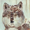 Snow Wolf by Terry Lewey