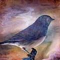 Snowbird Stories... by Arthur Miller