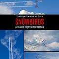 Snowbirds Collage 2 by Tatiana Travelways