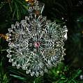 Snowcrystal Ornament 2016 by Michiale Schneider