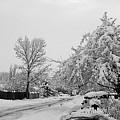 Snowed In by Jera Sky