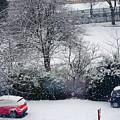 Snowfall 1 by Utpal Datta