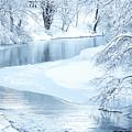 Snowfall On Gauley by Thomas R Fletcher