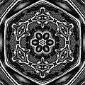 Snowflake 6 by Belinda Cox