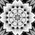 Snowflake 9 by Belinda Cox
