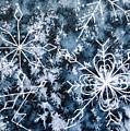 Snowflake Greetings by Rebecca Davis