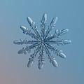 Snowflake Photo - Chrome by Alexey Kljatov