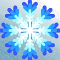 Snowflake Pile 2 by Blake Baines