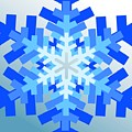 Snowflake Pile by Blake Baines