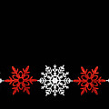 Snowflakes In A Row by Diane Macdonald
