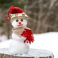 Snowman Day by Karin Pinkham