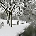 Walking On A Snowy Area by Erin Larcher
