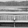 Snowy Bench by Buddy Scott