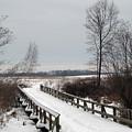 Snowy Bridge by Andrew Kazmierski