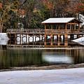 Snowy Bridge by Susan Cliett