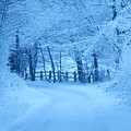 Snowy Country Lane by David Wilson