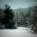 Snowy Creek Bend by Gail Schmiedlin