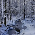 Snowy Creek by Bryan Benson