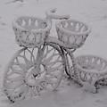 Snowy Cycle Wheel by Douglas Barnett