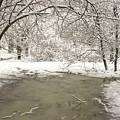 Snowy Day by Amanda Kiplinger