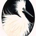 Snowy Egret by Helen Gerro
