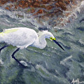 Snowy Egret Near Jetty Rock by Adam Johnson