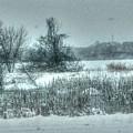 Snowy Field by Patti Pappas