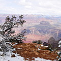 Snowy Frame - Grand Canyon by Larry Ricker
