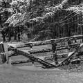 Snowy Gate by Wild Fire