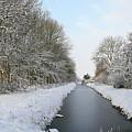 Frozen Scenery Along Canal by Erin Larcher