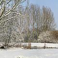 Snowy Landscape by Erin Larcher
