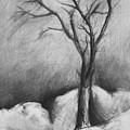 Snowy Moonlight by Jamey Balester