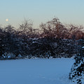 Snowy Moonset by Steve Atkinson