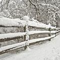 Snowy Morning by Michael Peychich