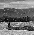 Snowy Mountain Farm by Capturing The Carolinas