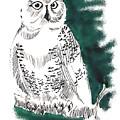 Snowy Owl II by Seth Weaver