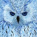 Snowy Owl by Koni Webb Bosch