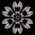 Snowy Owl Snowflake by Rhoda Gerig